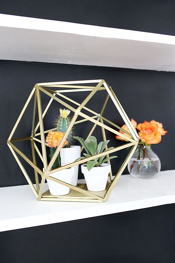 Gold Colored Cage and White Colored Vase which is Filled with Several Types of Cacti