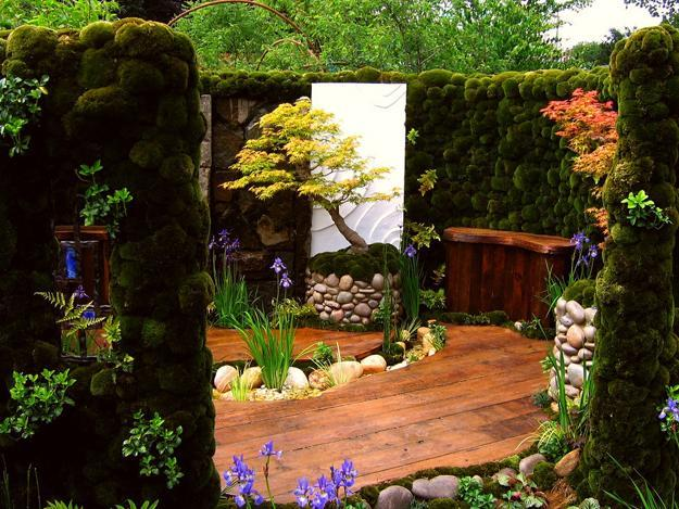 japanese garden design and plants