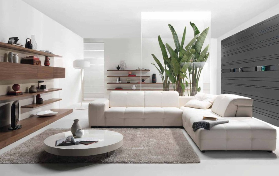 Living Room Decorating Ideas using Cozy Sofa Furniture
