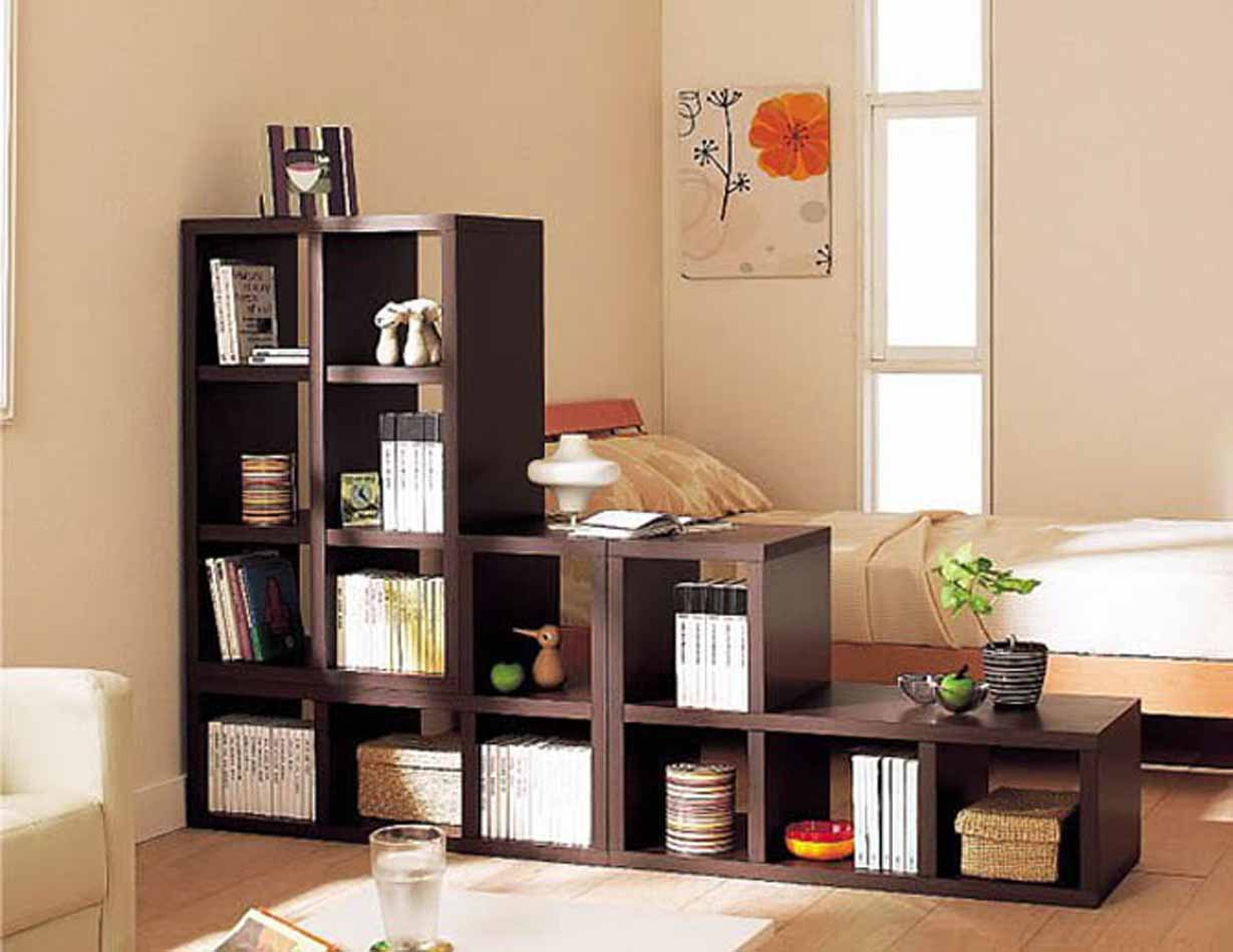 book-shelves-cheap-and-chic-living-room-decor