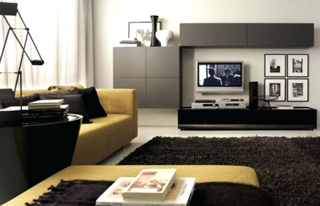 Modern Living Room Design Ideas - Black Rug